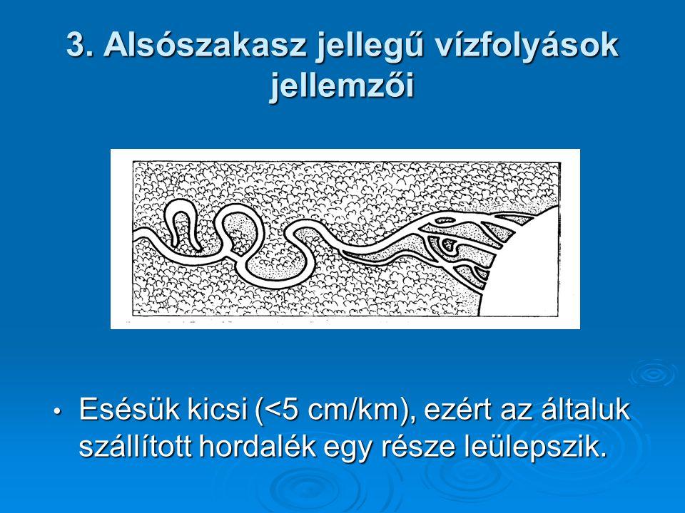 3. Alsószakasz jellegű vízfolyások jellemzői Esésük kicsi (<5 cm/km), ezért az általuk szállított hordalék egy része leülepszik. Esésük kicsi (<5 cm/k