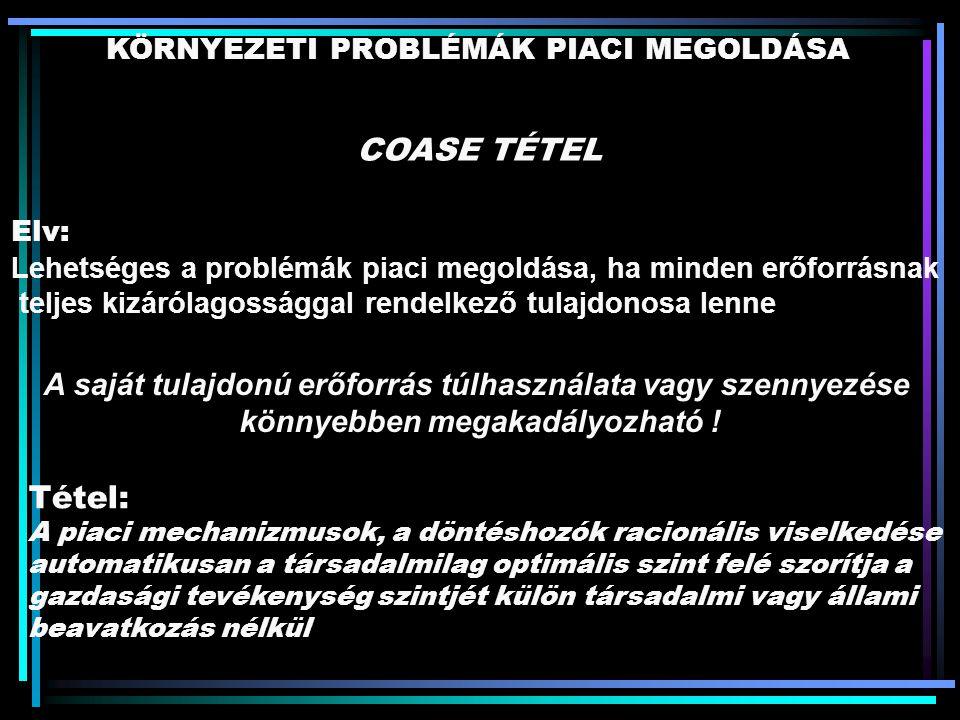 KÖRNYEZETI PROBLÉMÁK PIACI MEGOLDÁSA COASE TÉTEL Elv: Lehetséges a problémák piaci megoldása, ha minden erőforrásnak teljes kizárólagossággal rendelke