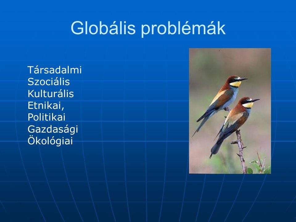 Globális problémák 3. Energiakérdések