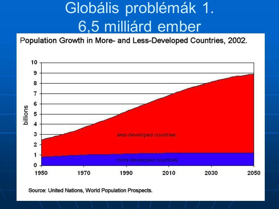 Globális problémák 5. Fölhasználati problémák