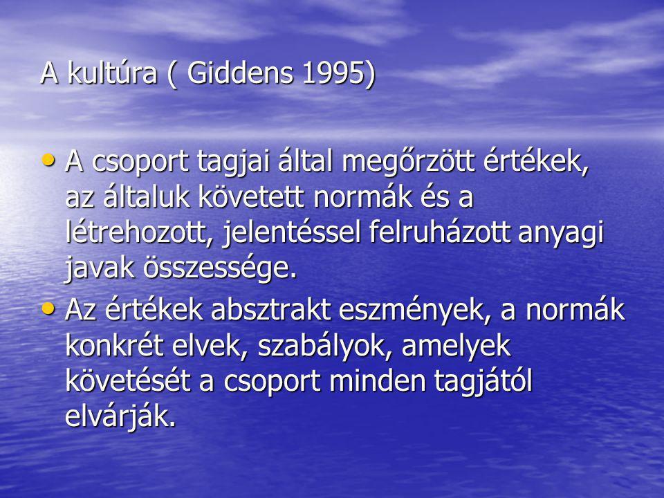 A kultúra ( Giddens 1995) A csoport tagjai által megőrzött értékek, az általuk követett normák és a létrehozott, jelentéssel felruházott anyagi javak összessége.