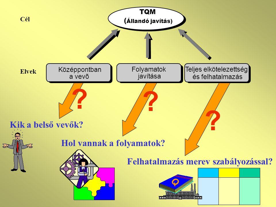 PROBLÉMÁK (2) Nehéz a továbbfejlődés (koncepcionális különbségek) ?