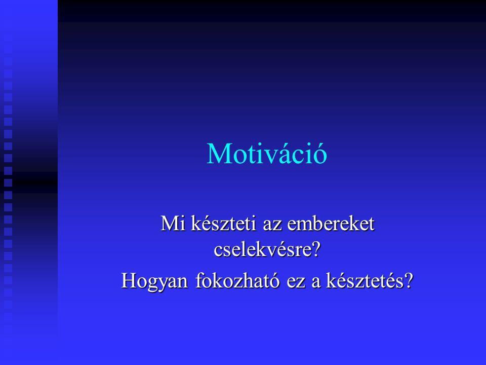 12 Herzberg kéttényezős elmélete Higiénés tényezők  fizetés  munkafeltételek  munkahely biztonsága  személyes kapcsolatok  elégedetlenség MUNKA FELTÉTELEK Motivációs tényezők  felelősség vállalás  a nagyobb teljesítmény  a fejlődés  a karrierépítés lehetősége  elégedettség MUNKA TARTALMA