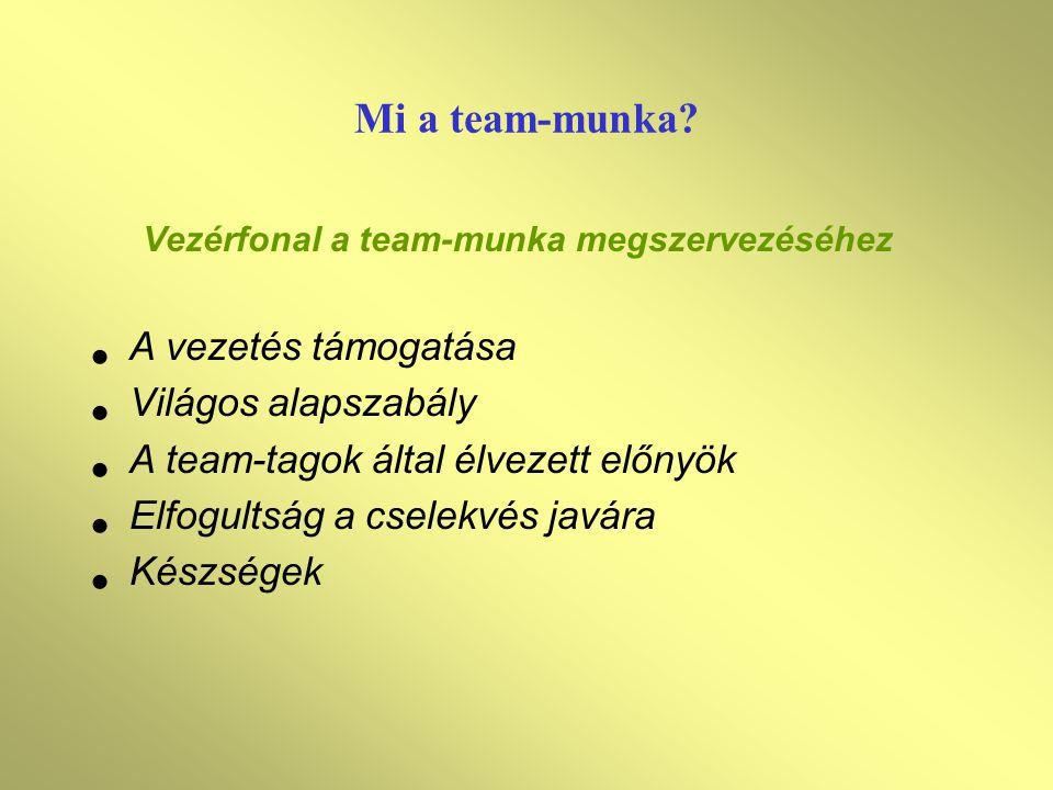 Mi a team-munka.