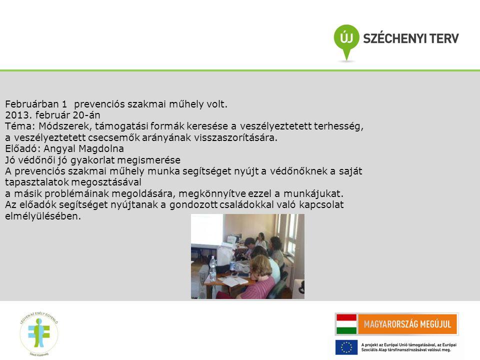 Februárban 1 prevenciós szakmai műhely volt. 2013. február 20-án Téma: Módszerek, támogatási formák keresése a veszélyeztetett terhesség, a veszélyezt