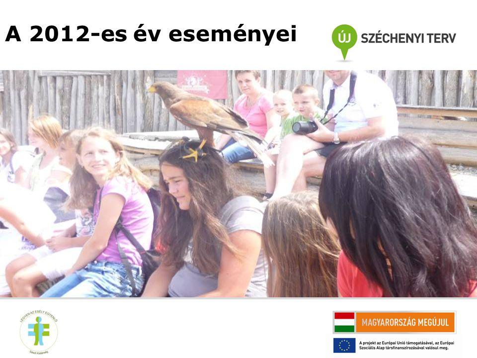 1, Olvasás népszerűsítő program Alsomocsolád 2012-ben hét alkalommal tartottak könyvklubot, alkalmanként 15-23 fő részvételével.