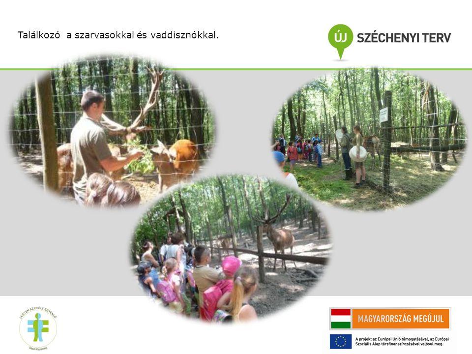 """""""A természettel való együttélést segíti az ökogazdálkodás bemutatása is, elsőként betegségekkel szemben ellenálló, régi magyar gyümölcsfajtákból állítottunk össze egy kisebb gyűjteményt."""