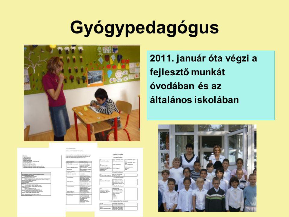 Gyógypedagógus 2011. január óta végzi a fejlesztő munkát óvodában és az általános iskolában