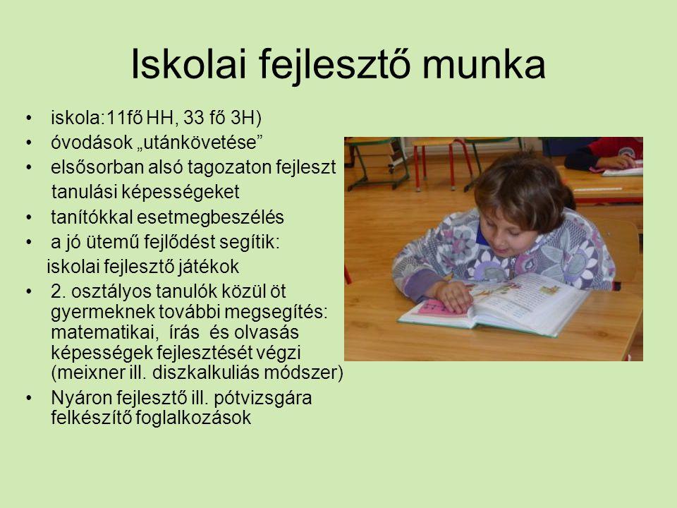 Mentor (patrónus) tanár 2011.