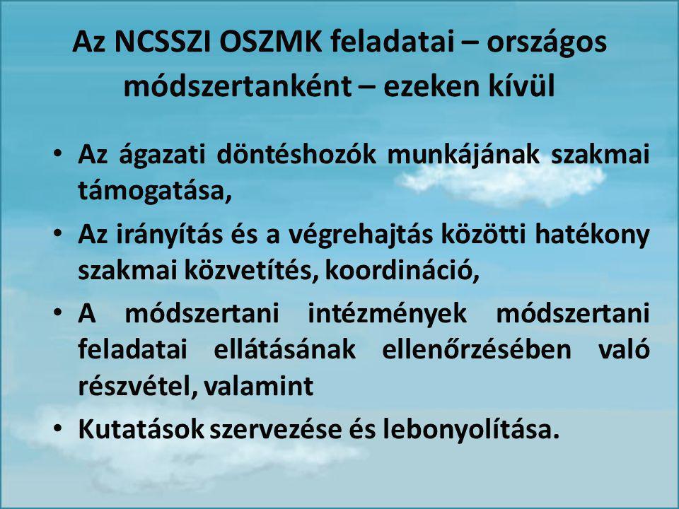 Az NCSSZI OSZMK feladatai – országos módszertanként – ezeken kívül Az ágazati döntéshozók munkájának szakmai támogatása, Az irányítás és a végrehajtás közötti hatékony szakmai közvetítés, koordináció, A módszertani intézmények módszertani feladatai ellátásának ellenőrzésében való részvétel, valamint Kutatások szervezése és lebonyolítása.