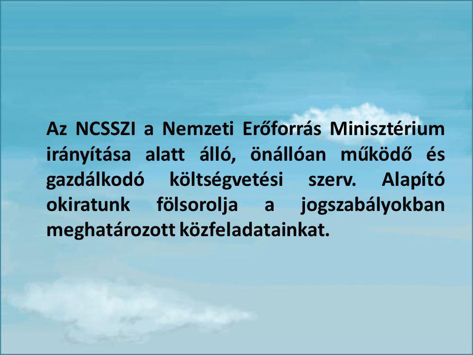 Az NCSSZI a Nemzeti Erőforrás Minisztérium irányítása alatt álló, önállóan működő és gazdálkodó költségvetési szerv.