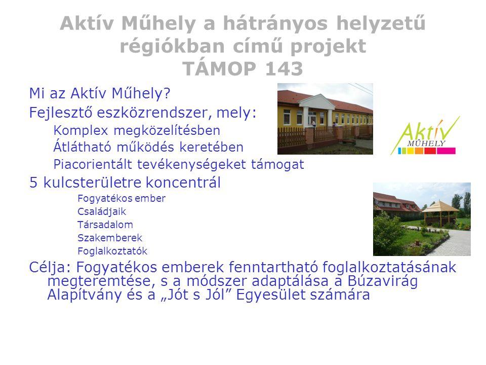 Aktív Műhely a hátrányos helyzetű régiókban című projekt TÁMOP 143 Mi az Aktív Műhely? Fejlesztő eszközrendszer, mely: Komplex megközelítésben Átlátha