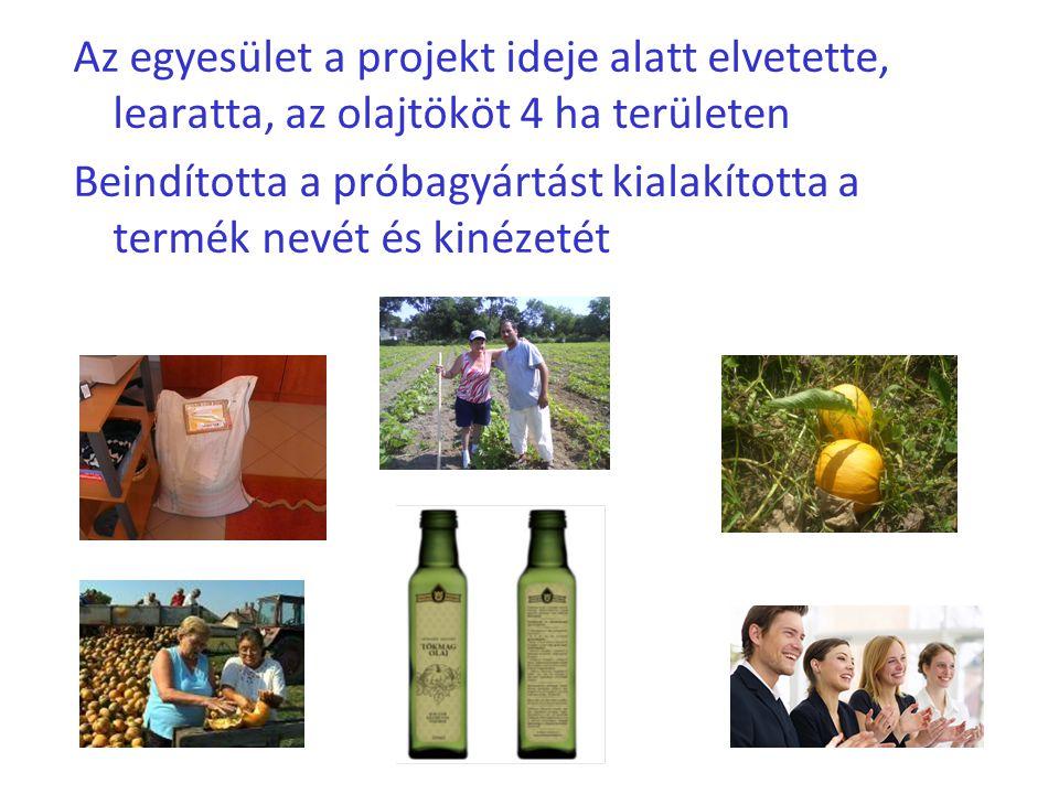 Az egyesület a projekt ideje alatt elvetette, learatta, az olajtököt 4 ha területen Beindította a próbagyártást kialakította a termék nevét és kinézet