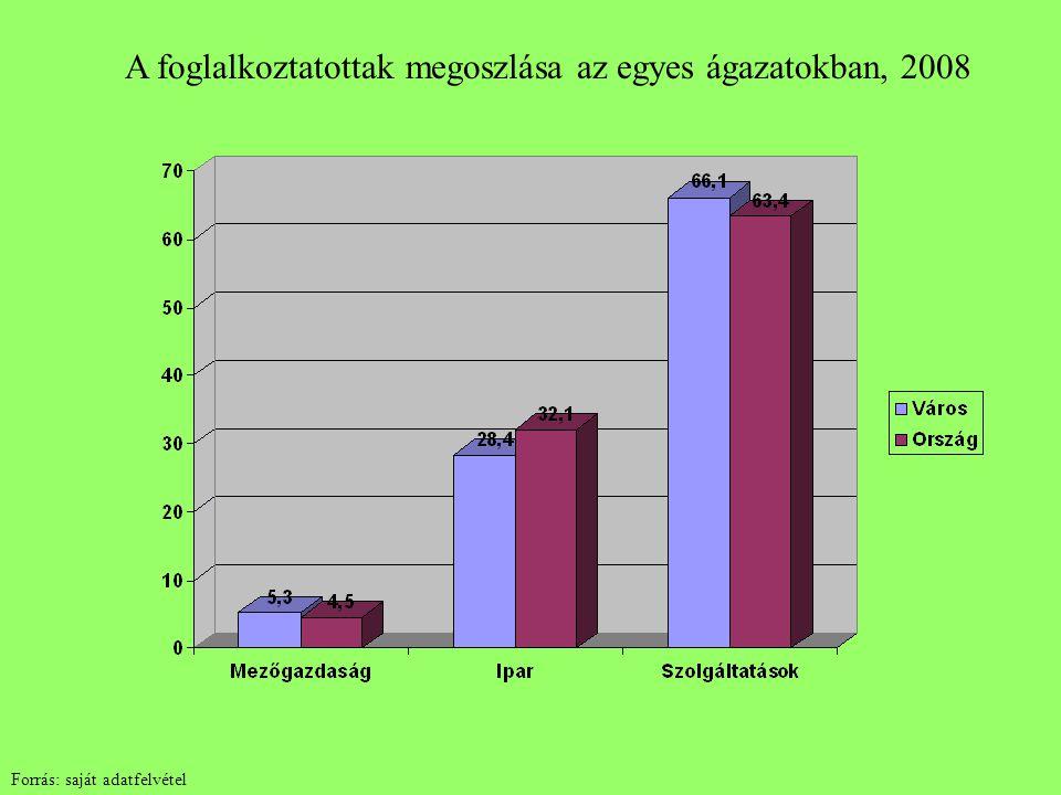 A foglalkoztatottak megoszlása az egyes ágazatokban, 2008 Forrás: saját adatfelvétel