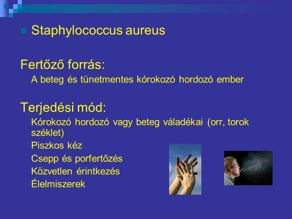 Staphylococcus aureus Fertőző forrás: A beteg és tünetmentes kórokozó hordozó ember Terjedési mód: Kórokozó hordozó vagy beteg váladékai (orr, torok széklet) Piszkos kéz Csepp és porfertőzés Közvetlen érintkezés Élelmiszerek