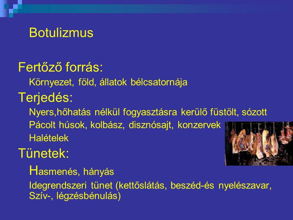Botulizmus Fertőző forrás: Környezet, föld, állatok bélcsatornája Terjedés: Nyers,hőhatás nélkül fogyasztásra kerülő füstölt, sózott Pácolt húsok, kolbász, disznósajt, konzervek Halételek Tünetek: H asmenés, hányás Idegrendszeri tünet (kettőslátás, beszéd-és nyelészavar, Szív-, légzésbénulás)