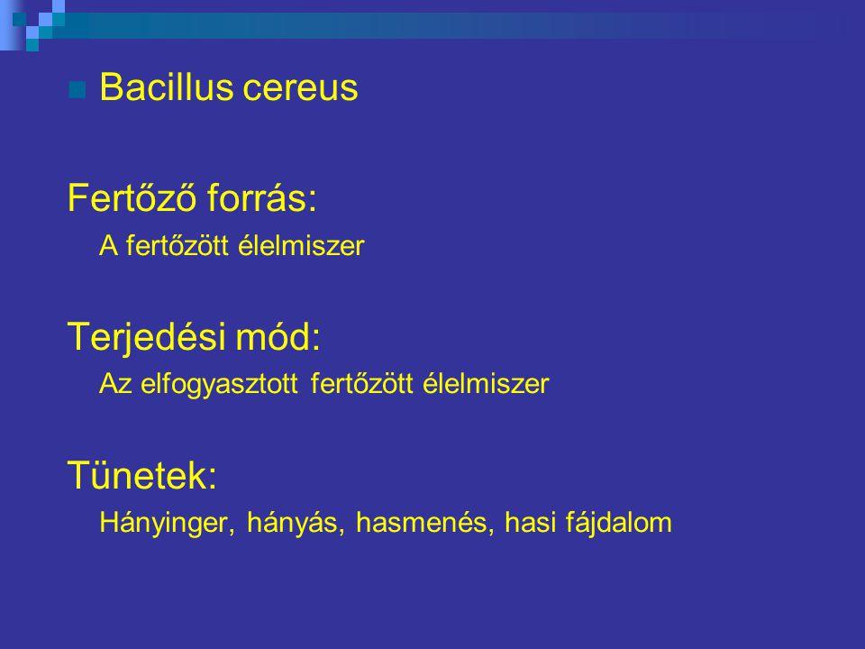 Bacillus cereus Fertőző forrás: A fertőzött élelmiszer Terjedési mód: Az elfogyasztott fertőzött élelmiszer Tünetek: Hányinger, hányás, hasmenés, hasi fájdalom