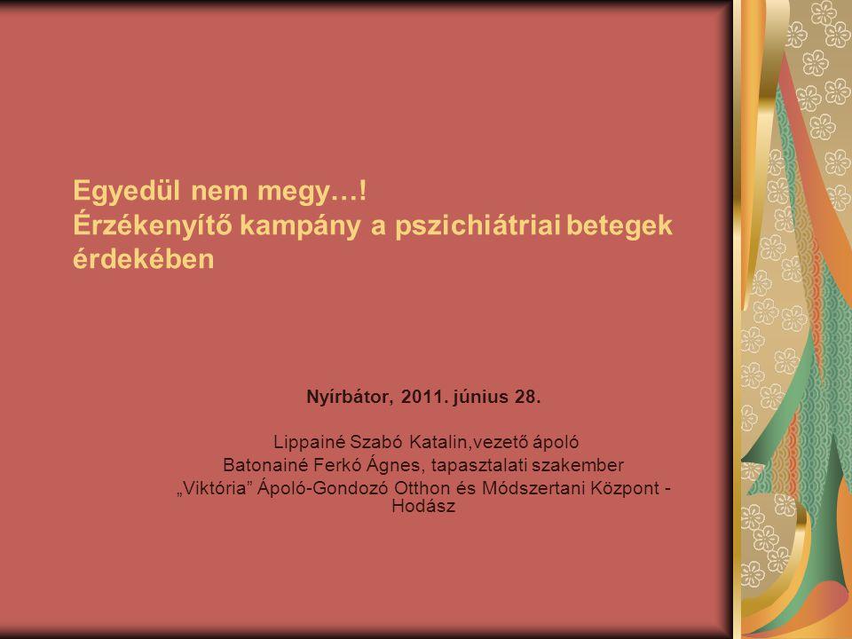 Egyedül nem megy…. Érzékenyítő kampány a pszichiátriai betegek érdekében Nyírbátor, 2011.