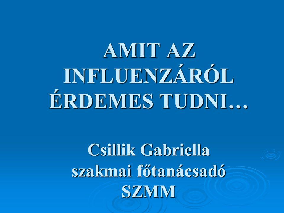 AMIT AZ INFLUENZÁRÓL ÉRDEMES TUDNI… Csillik Gabriella szakmai főtanácsadó SZMM