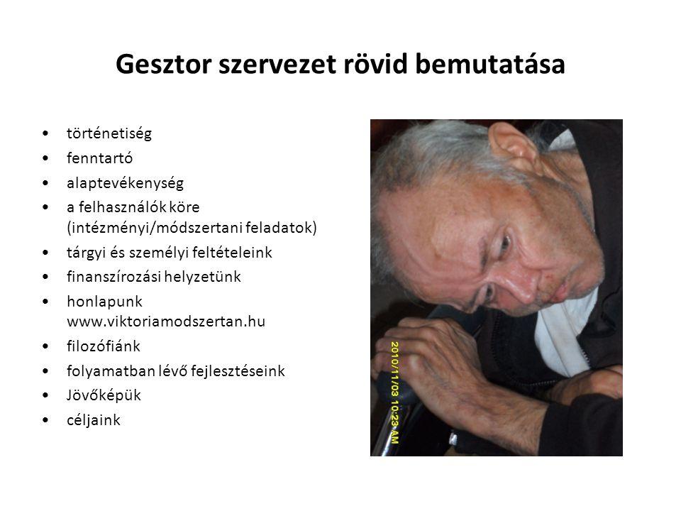 Gesztor szervezet rövid bemutatása történetiség fenntartó alaptevékenység a felhasználók köre (intézményi/módszertani feladatok) tárgyi és személyi fe