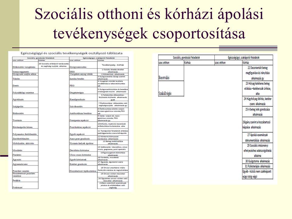 Szociális otthoni és kórházi ápolási tevékenységek csoportosítása