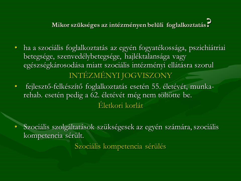 Mikor szükséges az intézményen belüli foglalkoztatás ? ha a szociális foglalkoztatás az egyén fogyatékossága, pszichiátriai betegsége, szenvedélybeteg