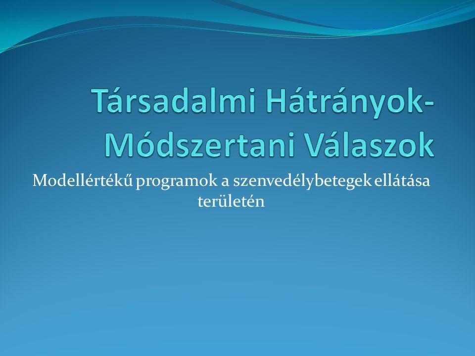 Modellértékű programok a szenvedélybetegek ellátása területén