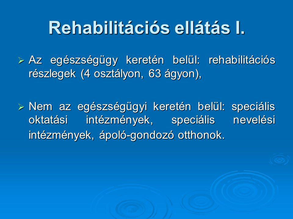 Rehabilitációs ellátás I.