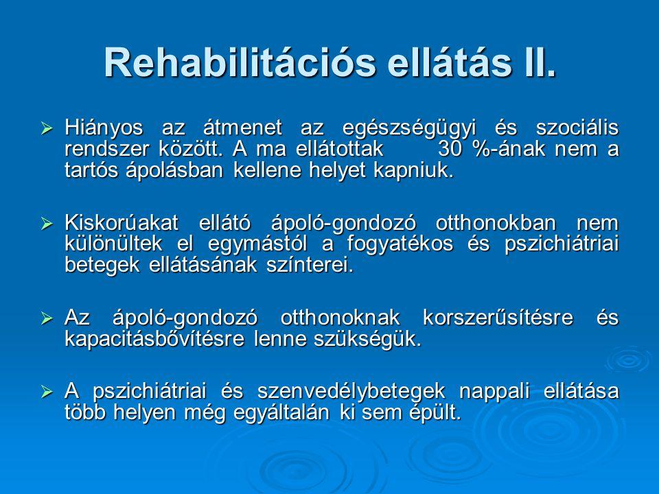 Rehabilitációs ellátás II. Hiányos az átmenet az egészségügyi és szociális rendszer között.