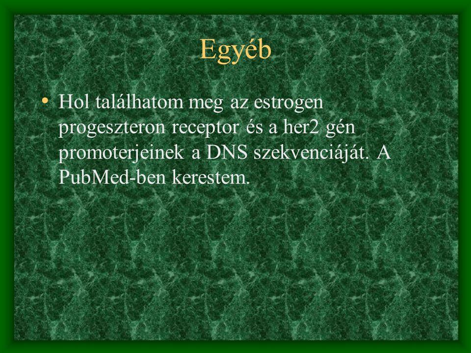 Leggyakrabban ajánlott weblapok http://www.lib.sote.hu http://www.google.com http://www.yahoo.com http://www.pubmed.nl http://www.weborvos.hu http://www.patika.hu http://www.eol.hu http://www.gyaloglo.hu/orvosok/temak http://www.fogorvos.lap.hu