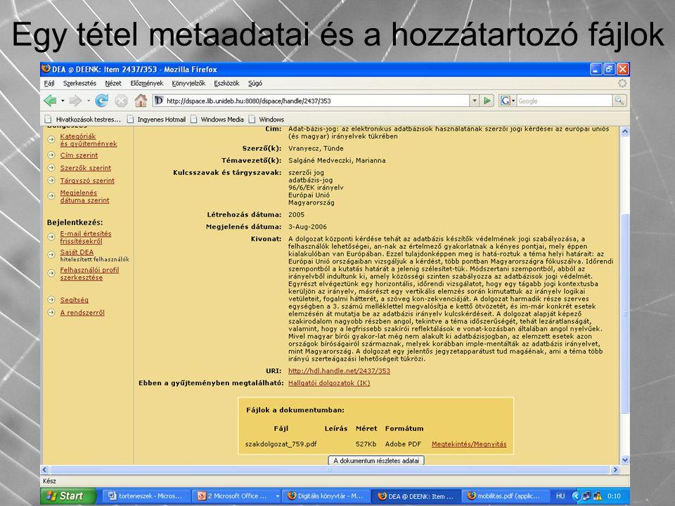 Egy tétel metaadatai és a hozzátartozó fájlok