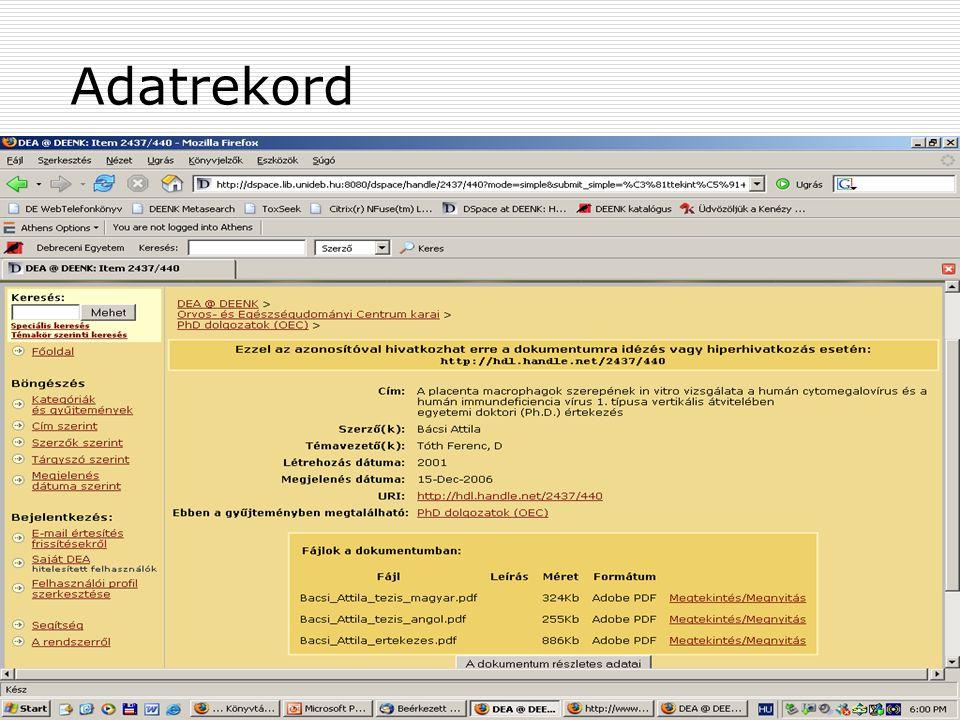 2007. május 22. Debrecen Digitalizálás és elektronikus hozzáférés 30 Adatrekord