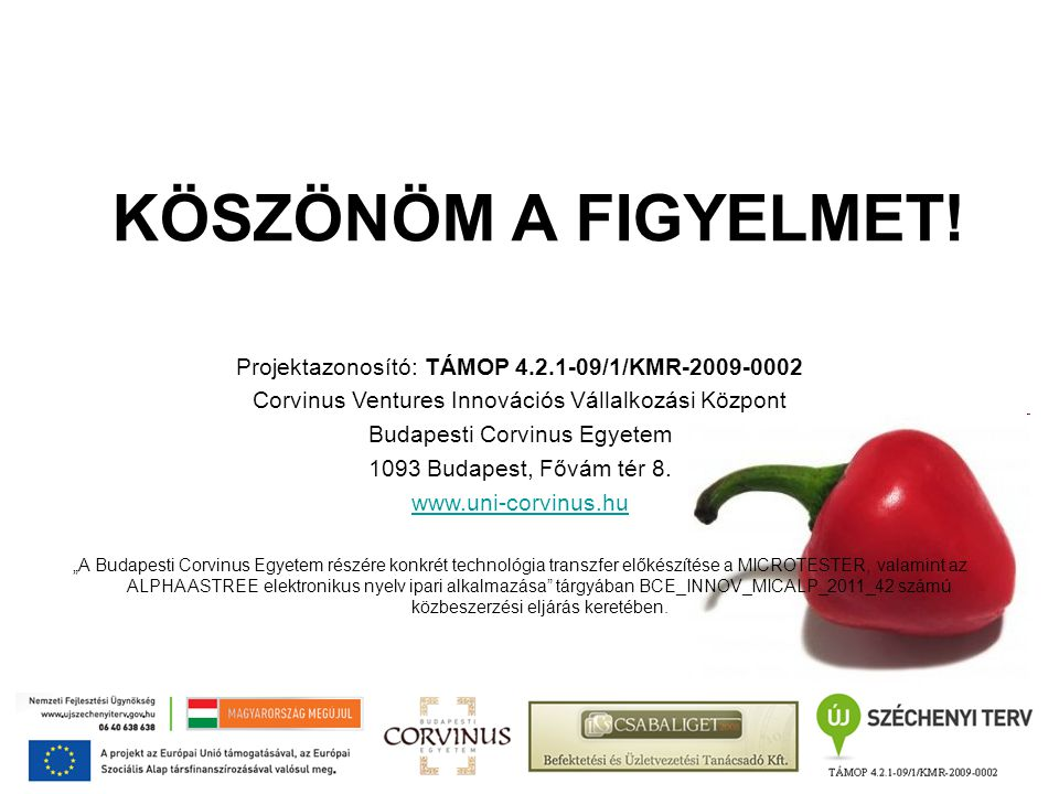 KÖSZÖNÖM A FIGYELMET! Projektazonosító: TÁMOP 4.2.1-09/1/KMR-2009-0002 Corvinus Ventures Innovációs Vállalkozási Központ Budapesti Corvinus Egyetem 10