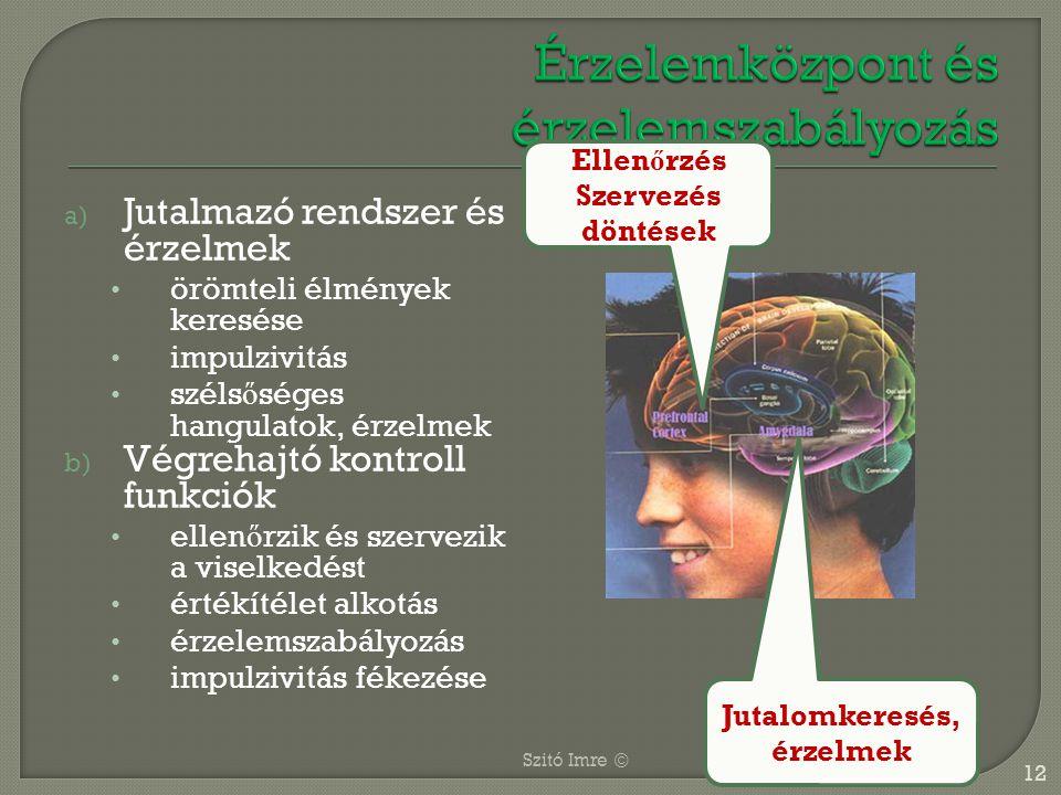 a) Jutalmazó rendszer és érzelmek örömteli élmények keresése impulzivitás széls ő séges hangulatok, érzelmek b) Végrehajtó kontroll funkciók ellen ő r