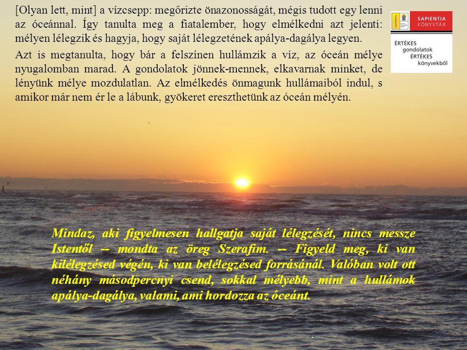 .. [Olyan lett, mint] a vízcsepp: megőrizte önazonosságát, mégis tudott egy lenni az óceánnal. Így tanulta meg a fiatalember, hogy elmélkedni azt jele