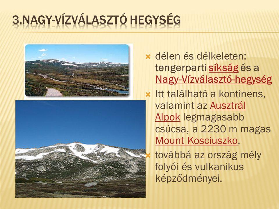  délen és délkeleten: tengerparti síkság és a Nagy-Vízválasztó-hegységsíkság Nagy-Vízválasztó-hegység  Itt található a kontinens, valamint az Ausztr