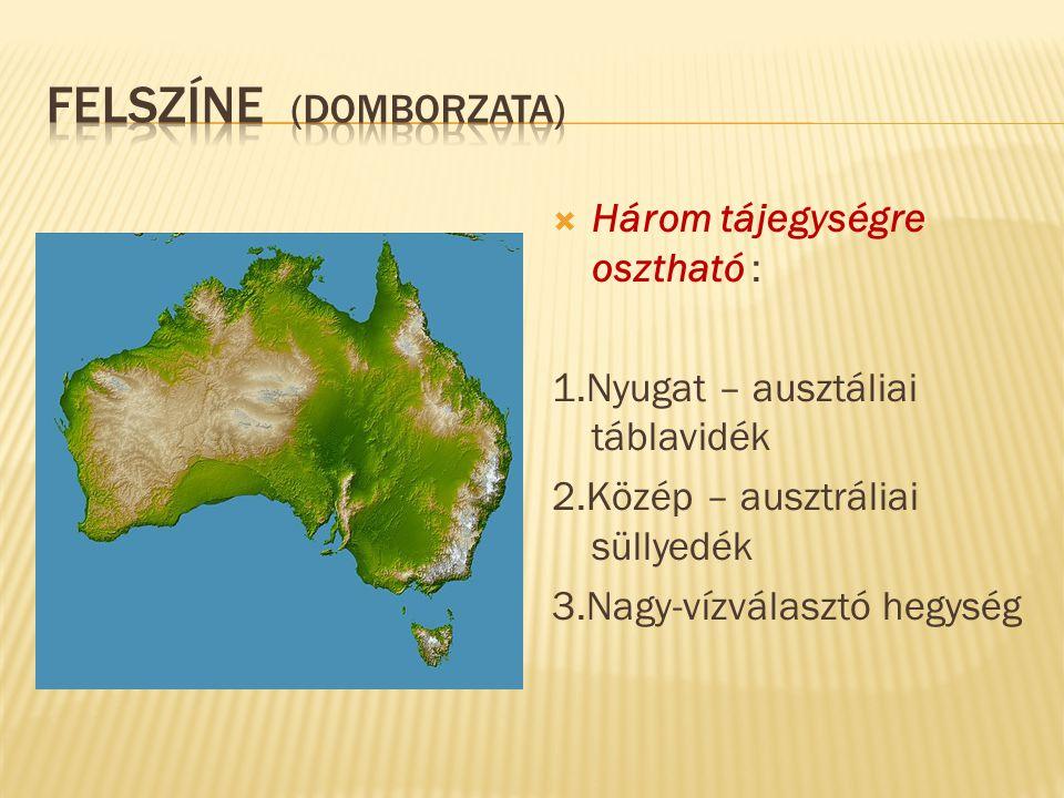  Három tájegységre osztható : 1.Nyugat – ausztáliai táblavidék 2.Közép – ausztráliai süllyedék 3.Nagy-vízválasztó hegység