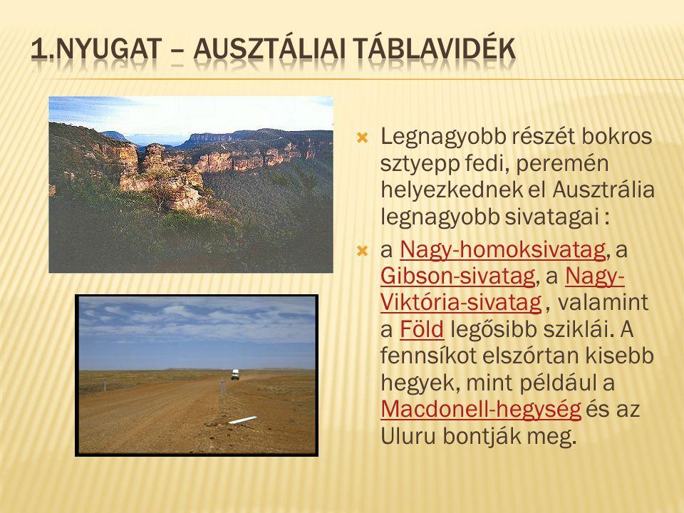  Legnagyobb részét bokros sztyepp fedi, peremén helyezkednek el Ausztrália legnagyobb sivatagai :  a Nagy-homoksivatag, a Gibson-sivatag, a Nagy- Vi