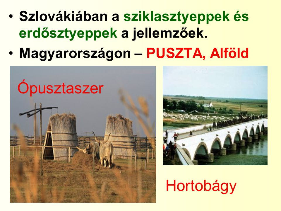 Szlovákiában a sziklasztyeppek és erdősztyeppek a jellemzőek. Magyarországon – PUSZTA, Alföld Ópusztaszer Hortobágy
