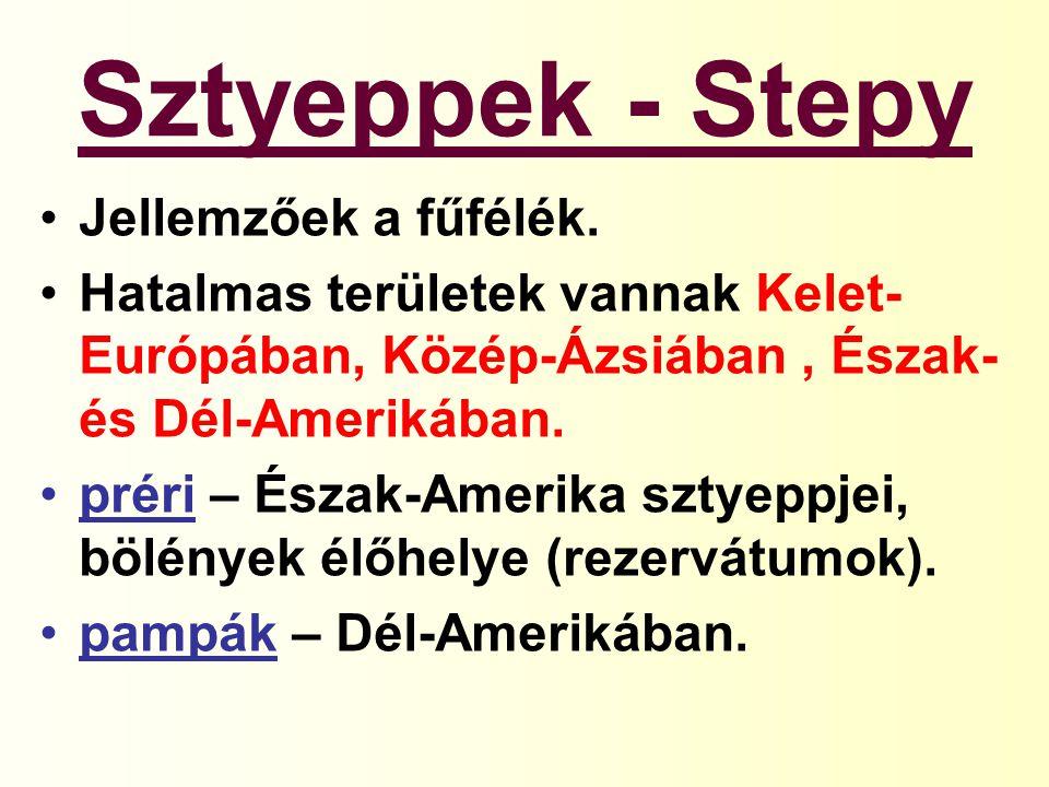 Sztyeppek - Stepy Jellemzőek a fűfélék. Hatalmas területek vannak Kelet- Európában, Közép-Ázsiában, Észak- és Dél-Amerikában. préri – Észak-Amerika sz
