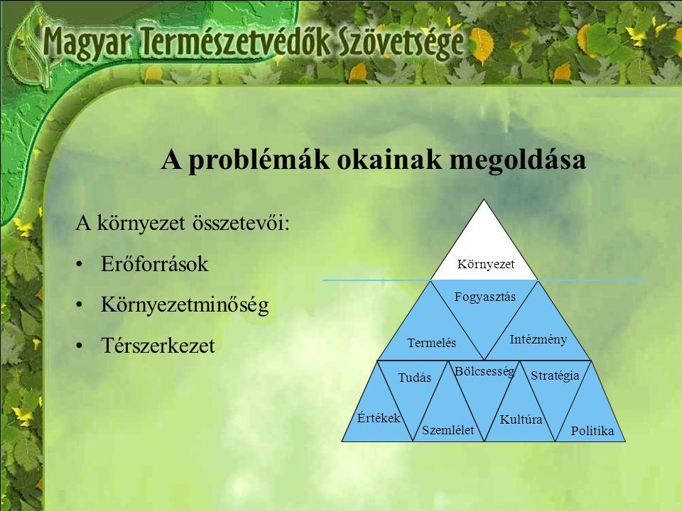 A problémák okainak megoldása A környezet összetevői: Erőforrások Környezetminőség Térszerkezet Környezet Értékek Tudás Bölcsesség Kultúra Politika Termelés Fogyasztás Intézmény Szemlélet Stratégia