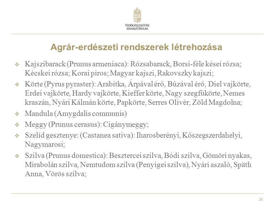 27 További információk  A támogatások teljes listájáról, és részleteiről a Mezőgazdasági és Vidékfejlesztési Hivatal területileg illetékes kirendeltségein, valamint a www.mvh.gov.hu internetes honlapon lehet érdeklődni.