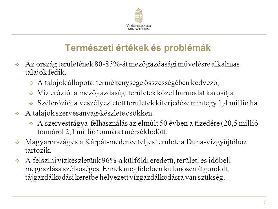 4 Természeti értékek és problémák  Felszín alatti vízkészletünk európai viszonylatban is kiemelkedő jelentőségű.