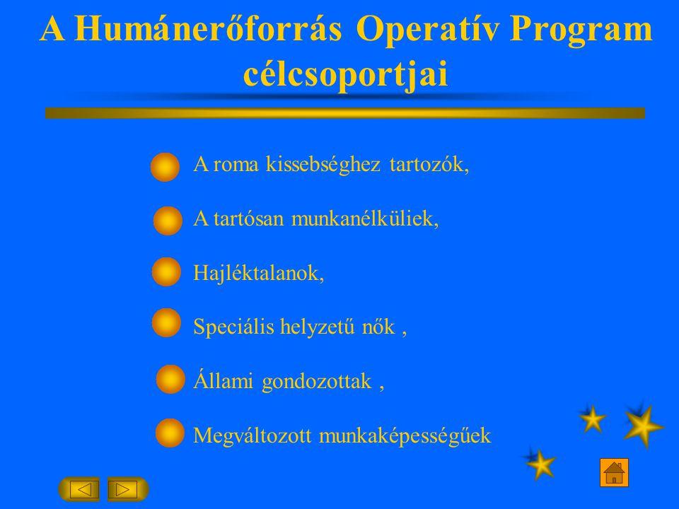 A Humánerőforrás Operatív Program célcsoportjai A roma kissebséghez tartozók, A tartósan munkanélküliek, Hajléktalanok, Speciális helyzetű nők, Állami gondozottak, Megváltozott munkaképességűek