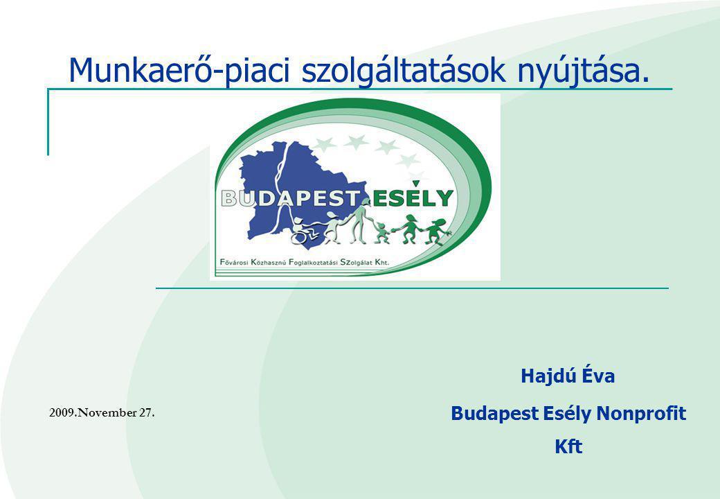 Hajdú Éva Budapest Esély Nonprofit Kft Munkaerő-piaci szolgáltatások nyújtása. 2009.November 27.
