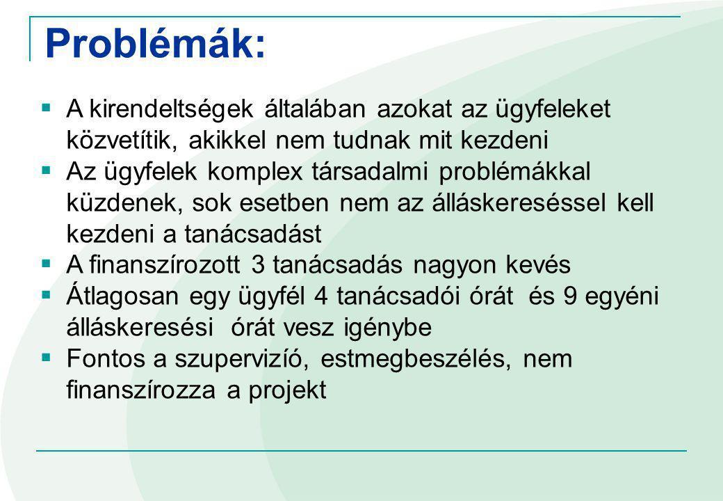 Reintegráció segítése: Mentori rendszer, patrónus rendszer (5 kirendeltségben 10 tanácsadó) Munkáltatói kapcsolattartó Munka-álláskereséi tréningek Állásfeltárás minden nap, két önkéntessel Kísérleti jelleggel: álláskeresési technikák tréning, a közfoglalkoztatásból kikerült ügyfeleknek