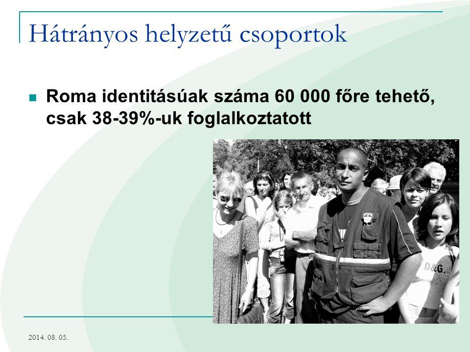 Hátrányos helyzetű csoportok Roma identitásúak száma 60 000 főre tehető, csak 38-39%-uk foglalkoztatott 2014. 08. 05.