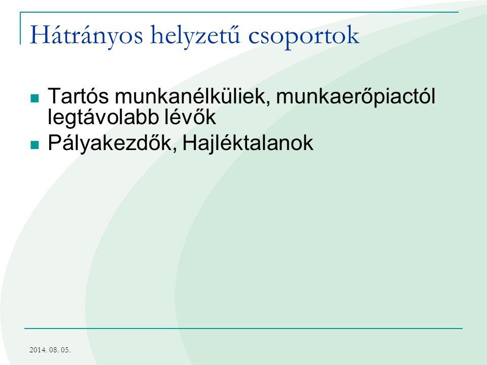 Hátrányos helyzetű csoportok Tartós munkanélküliek, munkaerőpiactól legtávolabb lévők Pályakezdők, Hajléktalanok 2014. 08. 05.