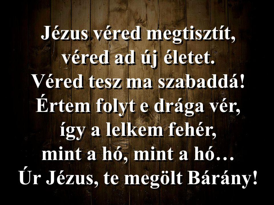 Jézus véred megtisztít, véred ad új életet. Véred tesz ma szabaddá! Értem folyt e drága vér, így a lelkem fehér, mint a hó, mint a hó… Úr Jézus, te me