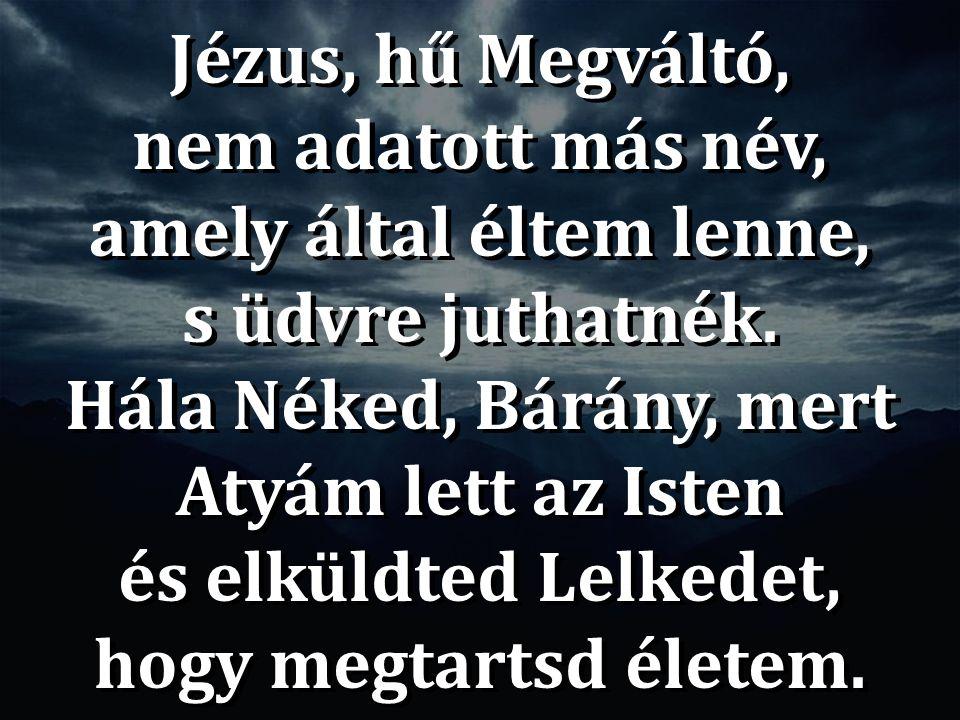 Jézus, hű Megváltó, nem adatott más név, amely által éltem lenne, s üdvre juthatnék. Hála Néked, Bárány, mert Atyám lett az Isten és elküldted Lelkede